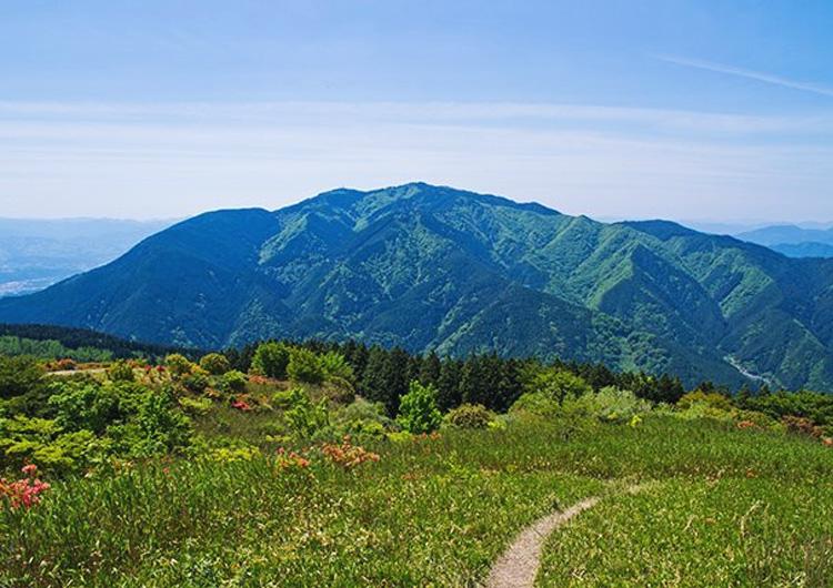 金剛山のキャンプ場「ちはや園地」で自然と星空を満喫!