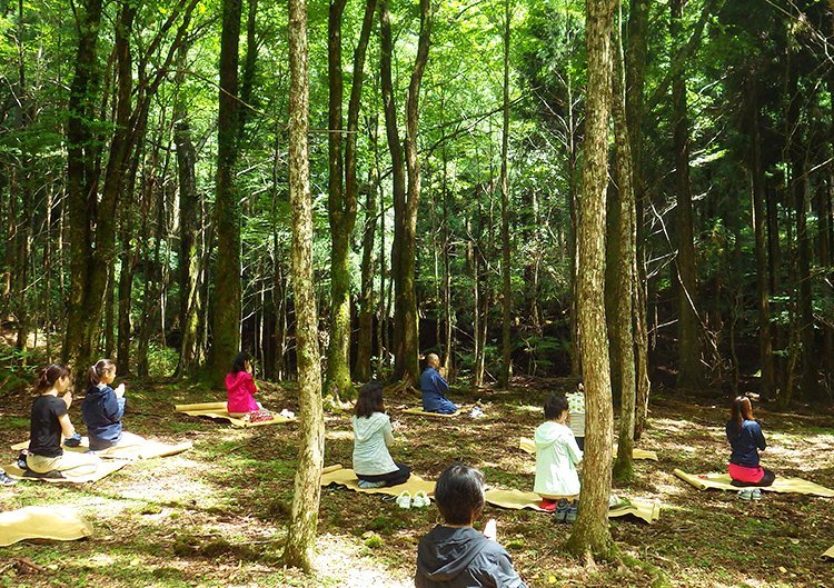 森林セラピー × 阿字観(あじかん)体験