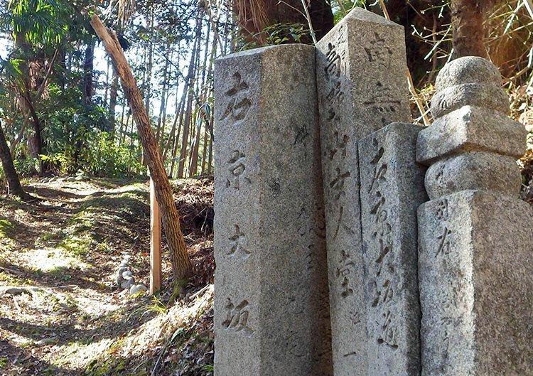 森林セラピールートを巡る古道歩きツアー 第3回:京大坂道