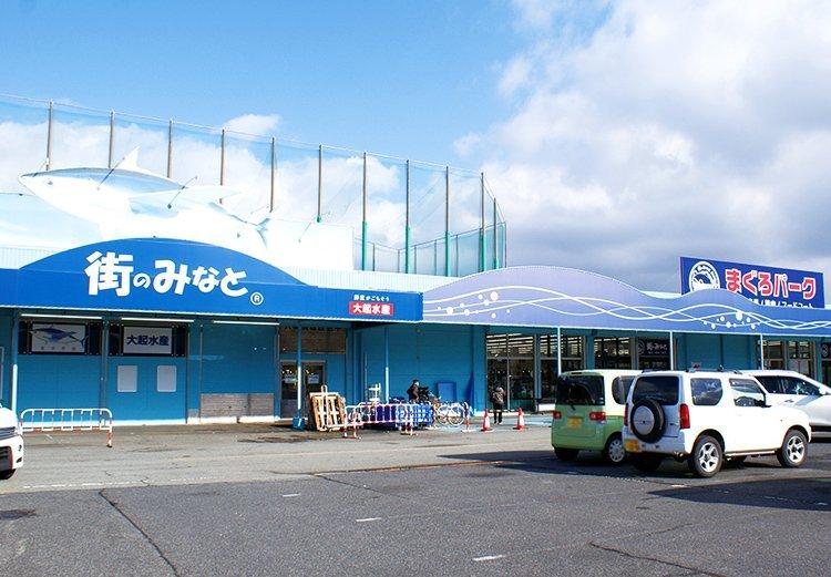 [ぶらりヘルシー 休日編] 堺の新名所へ「日本最大級のお魚体感」