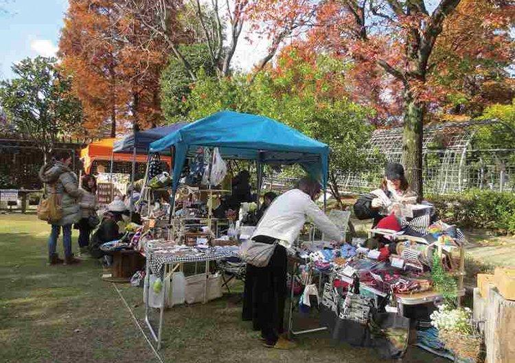 堺市都市緑化センター グリーンメッセ2019 堺の秋物語
