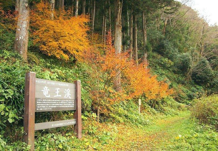 【募集中】地元ガイドと歩く 竜王渓&槇尾道トレッキング