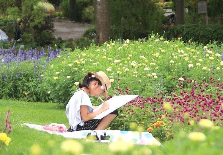 大阪府立花の文化園  子ども写生大会
