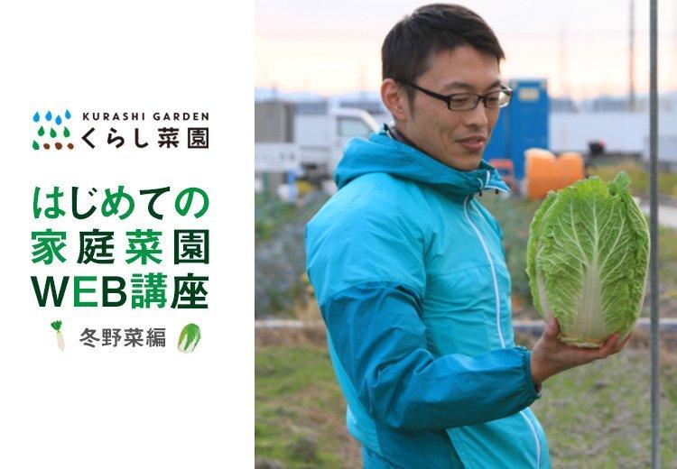 くらし菜園 はじめての家庭菜園WEB講座(冬野菜編)