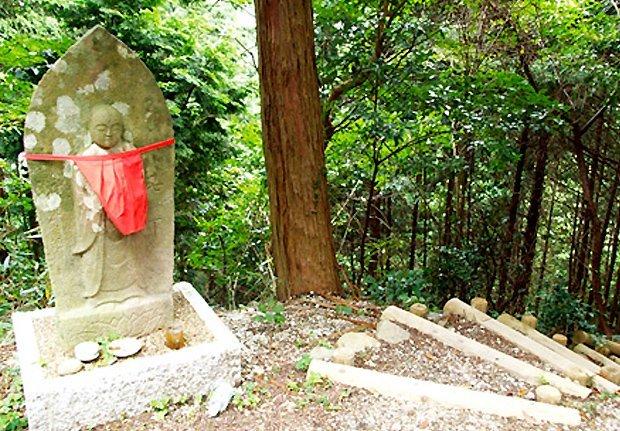 和泉葛城山登山・ハイキングコース(中級)  ※一部区間で通行止めが発生