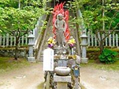 金剛山コース(家族向け・中級)