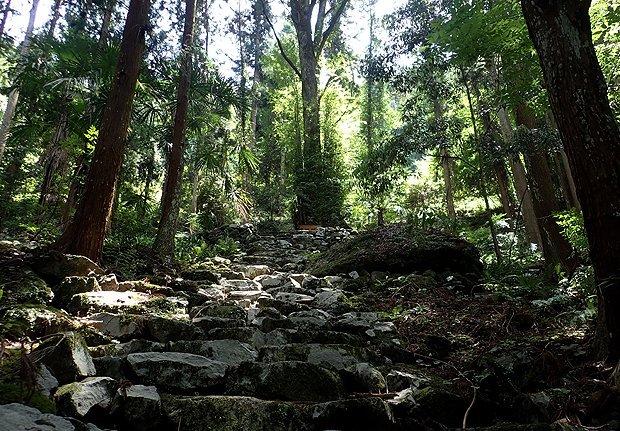 高野山黒河道コース(上級)
